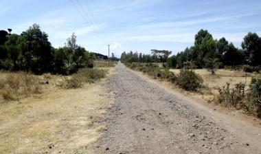 Car Racing in Langalanga