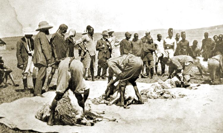 Early Farming Disasters in Kenya
